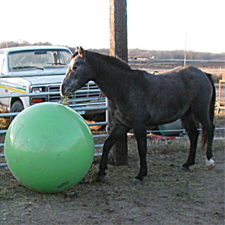 greenball2.jpg